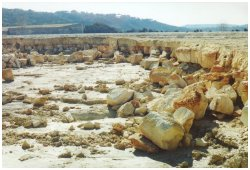 Limestone cut by flood waters